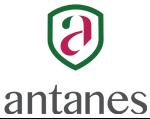 antanes-school